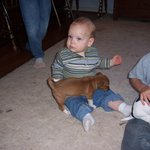 Matthew with puppy